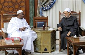 الإمام الأكبر: الأزهر حريص على تعزيز التعاون مع دول القارة الإفريقية |صور