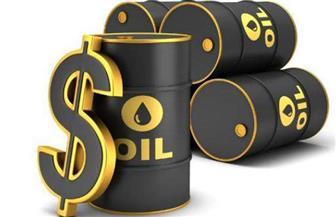 في أكبر تراجع منذ 8 أشهر ..سعر برميل النفط يهوى أكثر من 5%