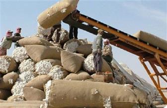 خطة شاملة للنهوض بصناعة الغزل والنسيج واستعادة مكانة القطن المصري