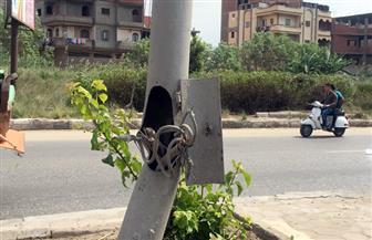 كهرباء الغربية تحذر المواطنين من ملامسة أعمدة الإنارة