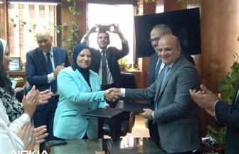 102 مليون جنيه لتدعيم محطتي كفر الشيخ وزيزينيا بـ(6) محولات كهرباء جديدة