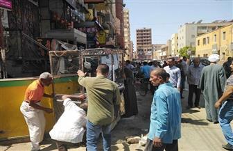 حملات لضبط الأسواق والتجميل ودهان أعمدة الإنارة بمركز أبوقرقاص بالمنيا