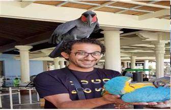 أحمد حلمي يحمل ببغاء فوق رأسه: «على فكرة أنا مرعوب»