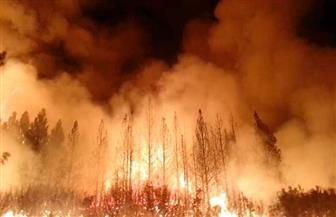 حرائق غابات جديدة تهدد مكتبة الرئيس الأمريكي الأسبق رونالد ريجان وسط رياح قوية