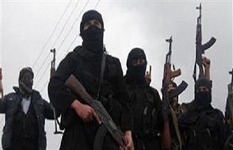 دول الساحل الإفريقي تؤكد تصميمها على مواجهة الإرهاب
