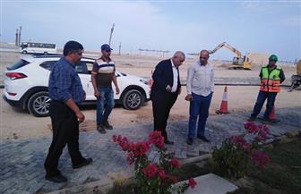 مساعد نائب رئيس المجتمعات العمرانية يتابع تنفيذ المشروعات بالمنصورة الجديدة | صور