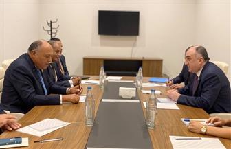 تفاصيل لقاء وزير الخارجية مع نظيره الأذربيجاني على هامش قمة حركة عدم الانحياز  صور