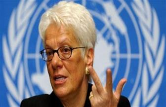 محققة سابقة بالأمم المتحدة: يجب محاسبة أردوغان على العملية العسكرية في سوريا