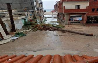 انقطاع التيار الكهربائي في الشيخ زويد بشمال سيناء بسبب سوء الأحوال الجوية | صور