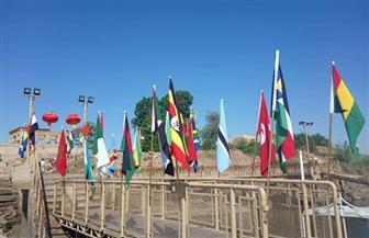 أصحاب المراكب الشراعية يستقبلون ضيوف الأفروصينى بأعلام المهرجان