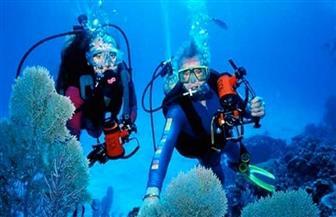 ٣٦ مركزا للأنشطة البحرية والغوص ويخوت سفاري يحصلون على شهادة السلامة الصحية