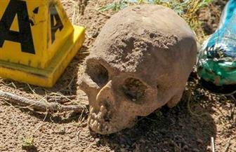 العثور على أكثر من 40 جمجمة عند مذبح في وكر عصابة للمخدرات في المكسيك