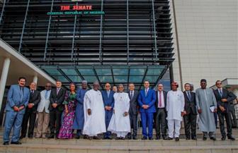 على عبد العال يلتقي رئيس مجلس الشيوخ النيجيري   صور