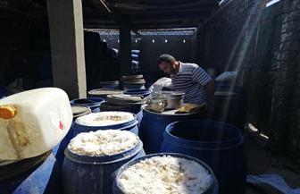 ضبط 6 أطنان مخلل فاسد بمصنع في سوهاج | صور