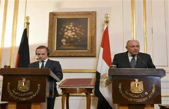 ألمانيا تسلم مصر كتابا أثريا بعنوان «محمود رائف أفندي.. أطلس شديد» بعد تهريبه