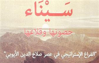 """هيئة الكتاب تصدر """"سيناء حصونها وقلاعها: الفراغ الإستراتيجي في عصر صلاح الدين الأيوبي"""" لسامي صالح"""