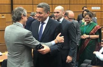 سفير مصر بالنمسا يهنئ الأرجنتيني جروسي لانتخابه مديرا للوكالة الدولية للطاقة الذرية