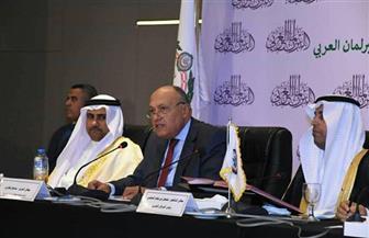 وزير الخارجية يتناول ملف الأمن المائي وسد النهضة في كلمته أمام البرلمان العربي |صور