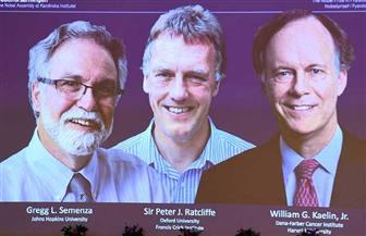 أمريكيان وبريطاني يفوزون بجائزة نوبل للطب لعام 2019