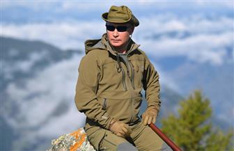 بوتين يتسلق الجبال ويجمع الفطر في سيبيريا قبل يوم من احتفاله بميلاده | فيديو