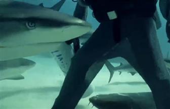 شجاعة امرأة تنقذ أسماك القرش في جزر الباهامز من البشر | فيديو