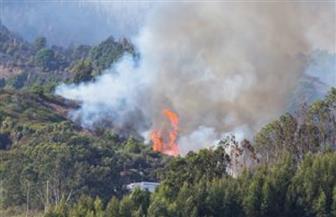 اشتعال مئات الحرائق الخطيرة في الغابات بأستراليا