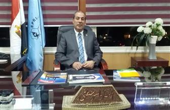 مدير معهد البترول: استراتيجية مصر 2030 ركزت على قطاعي المياه والطاقة