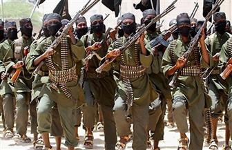 مقتل زعيم تنظيم القاعدة عن منطقة جنوب آسيا في أفغانستان