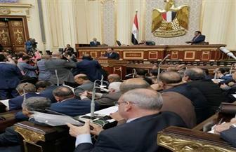 نص بيان رئيس الوزراء أمام مجلس النواب | صور