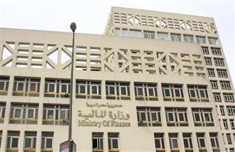 وزير المالية يتعهد بحل أزمة عمال التشجير وإرسال مستحقات العاملين بالصناديق بنظام الربع السنوى