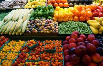 """""""الزراعة"""" تكشف عن حقيقة تلف المحاصيل الزراعية تأثرا بالتغيرات المناخية"""