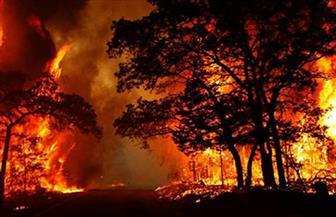 إجلاء نحو 8 آلاف شخص بسبب حرائق الغابات بجنوب كاليفورنيا