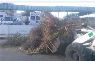 حملة مكثفة لإزالة القمامة ومخلفات المباني والتعديات بعدة مناطق بالغردقة