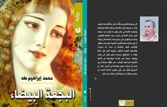 """مناقشة """"البجعة البيضاء"""" لمحمد إبراهيم طه فى مختبر السرديات.. الثلاثاء"""