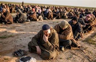 تركيا تبدأ ترحيل أسرى من تنظيم داعش إلى بلدانهم