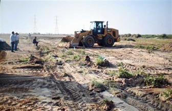 إزالة 11 حالة تعد على أراضي أملاك الدولة في حملة  بالفيوم | صور