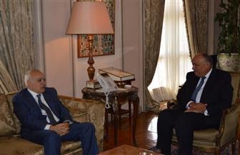 وزير الخارجية يبحث مع الممثل الأممي لليبيا مستجدات الأوضاع| صور