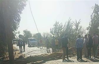 سوء الأحوال الجوية يتسبب في سقوط شجرة وقطع طريق «محلة منوف - طنطا» | صور