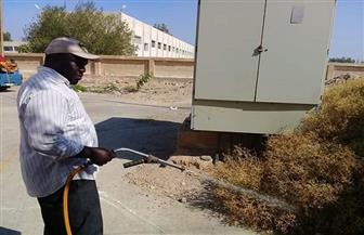 تدشين حملة لمقاومة الحشرات والقوارض والزواحف بمدينة رأس غارب| صور