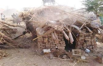 إزالة 23 حالة تعد على أراضي الدولة بمدينة إسنا في الأقصر | صور