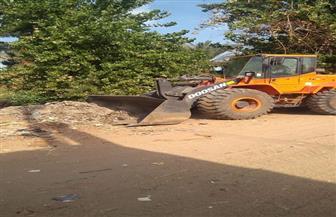 إزالة 25 حالة تعد على الأراضي الراعية جنوب الأقصر ورفع 30 طن بالزينية | صور