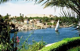 """""""الموارد المائية"""" تنفى تسرب بقعة زيتية بمياه النيل في محافظة أسوان"""