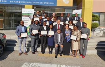 السفارة المصرية فى سول تنظم برنامجا لبناء القدرات للدبلوماسيين الأفارقة | صور