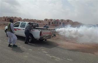 حملة مكبرة لمكافحة الأمراض المتوطنة برأس حدربة وحلايب بالبحر الأحمر | صور