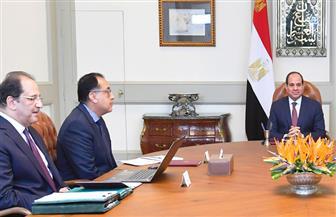 الرئيس السيسي يستعرض آخر المستجدات على صعيد الأوضاع الأمنية ومكافحة الإرهاب