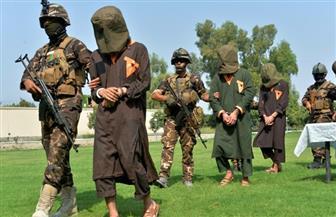 """استسلام 72 من """"داعش خراسان"""" للقوات الأفغانية في إقليم ننكارهار"""