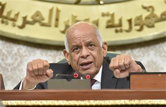 """عبد العال يشن هجوما على غادة عجمي بسبب مشروع قانون """"الذوق العام"""""""