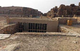 افتتاح مقبرتي إيدو وقار بمنطقة  الهرم|صور