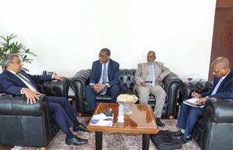 رئيس البريد المصري يستقبل نظيره الموريتاني | صور