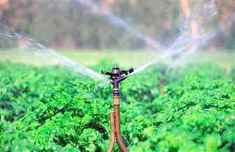 الحملة القومية لترشيد استهلاك المياه فى الزراعة تستهدف 300 فدان بسوهاج